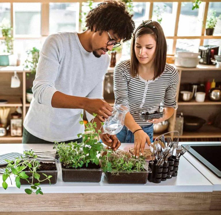 5 dicas para ter um apartamento mais sustentável e econômico